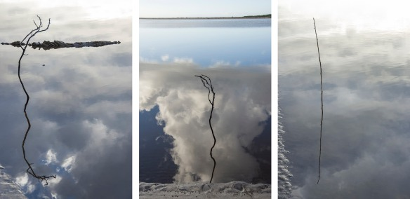 Floating twig/cloud triptych - Marlo, Victoria